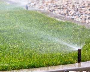 Irrigation System watering guide and tips for Big Roll sodded lawns and landscapes from Lukes Sodding and Landscaping.